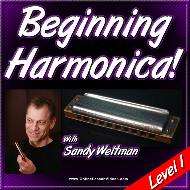 Amazon.com: Learn to Play Harmonica: Contains 10-Hole ...
