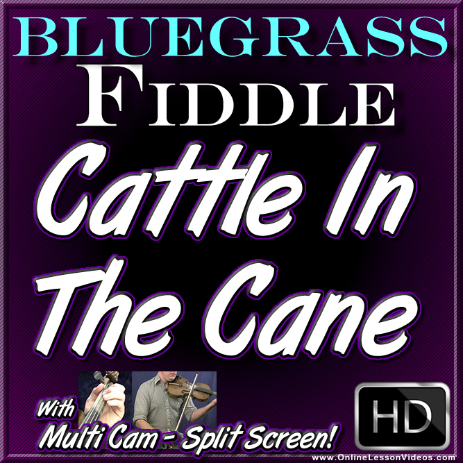 CATTLE IN THE CANE - Bluegrass Fiddle Lesson