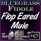 FLOP EARED MULE - Bluegrass Fiddle Lesson