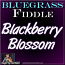 BLACKBERRY BLOSSOM - Bluegrass Fiddle Lesson - WITH SHEET MUSIC!!!