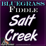 SALT CREEK - Bluegrass Fiddle Lesson