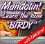 Birdy - Mandolin Lesson