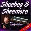 Sheebeg & Sheemore - Irish Harmonica Lesson