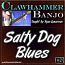 Salty Dog Blues - Clawhammer Banjo Lesson